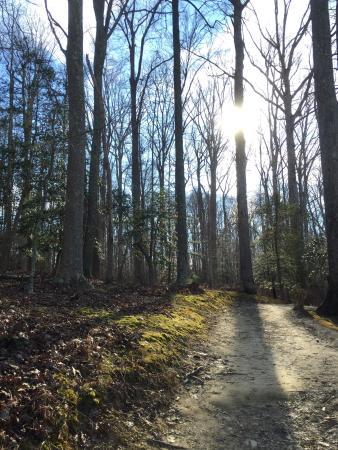 Newport News Park: Running trail!