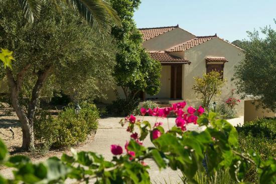 Villas Lefkothea: Garden