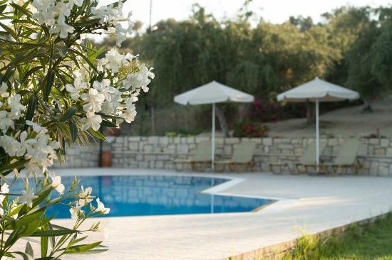 Villas Lefkothea: Swimming pool