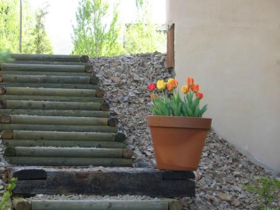 Adobe Rose B&B: Outside stairs