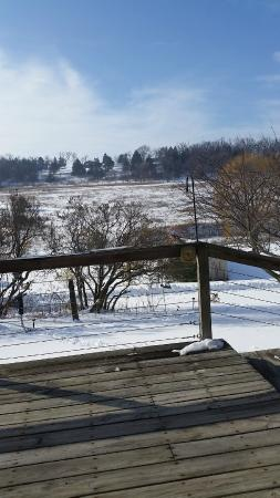 Hawk Valley Retreat & Cottages: Our view from breakfast