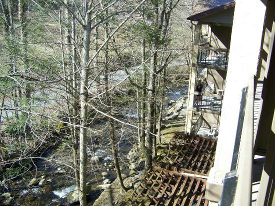 Tree Tops Resort: Roaring Form Creek, taken from upper floors
