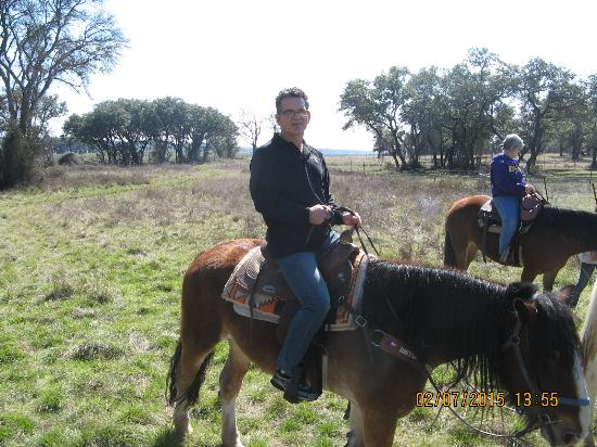 Texas Trail Riding Co.: One of the horses
