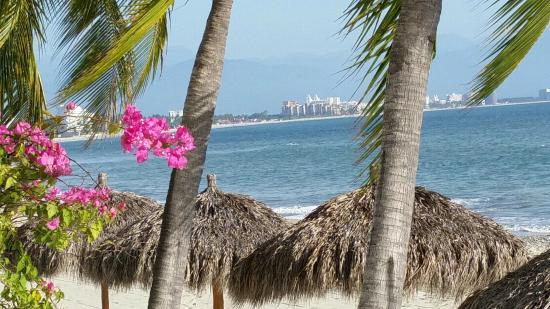 Vista Vallarta: The palapas on the beach with a view of Puerto Vallarta in the distance