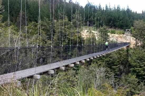 Lake District Adventures: On the Waikato River Trail