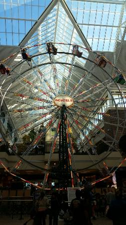 Scheels : Indoor Ferris Wheel!!!