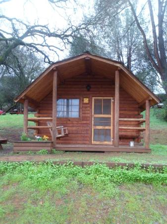 Placerville KOA: Woodsy