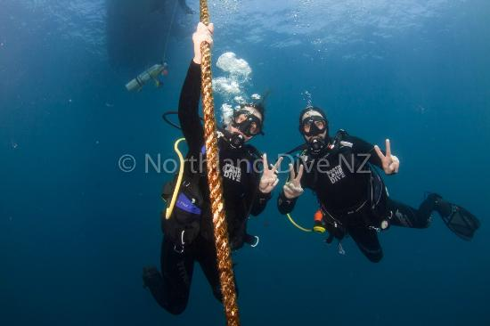 Northland Region, Nuova Zelanda: Fun diving