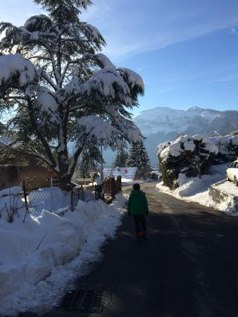 Chalet Deux Freres : walking to the telecabine