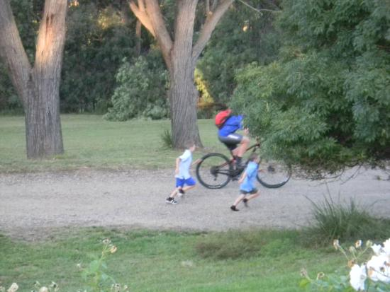 Canyonleigh, Australia: Perfect for cycling and bush walks
