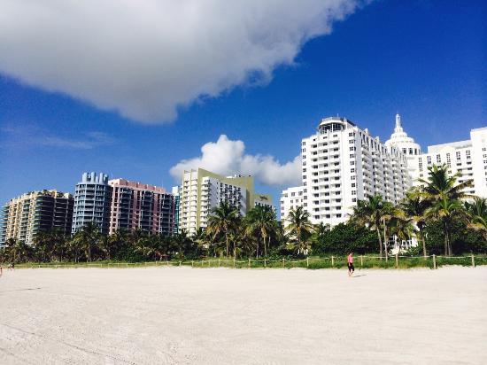 S Club South Beach Hotel Strip