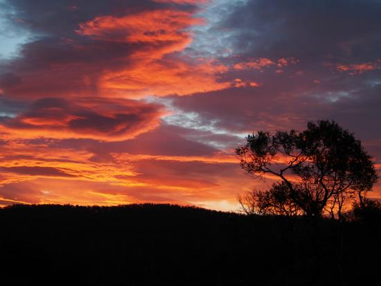 Launceston Bed and Breakfast Retreat: Sunsetting