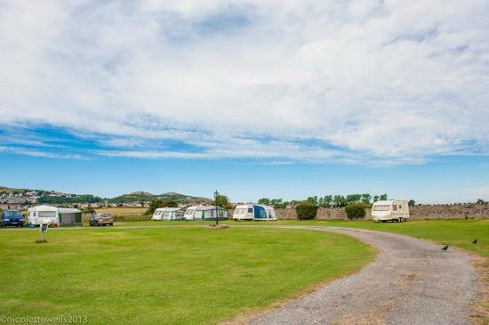 Dinarth Hall Camping & Caravan Park : Caravan Pitches