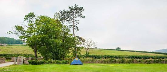 Dinarth Hall Camping & Caravan Park : Tent Pitches
