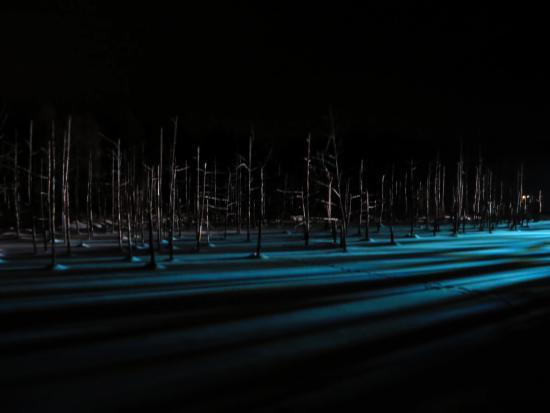 Auberge de Tefutefu: ライトアップされた青池