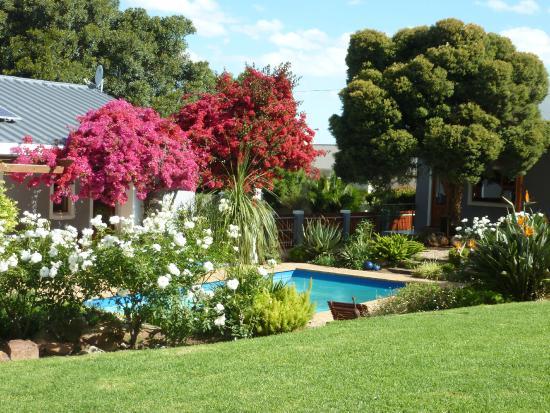 Marula Lodge: Garten