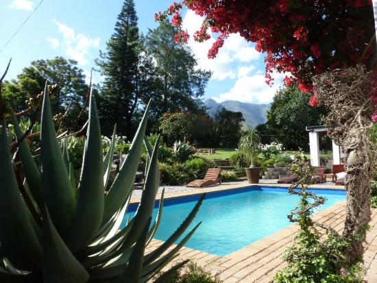 Marula Lodge Guesthouse: Pool/Garten