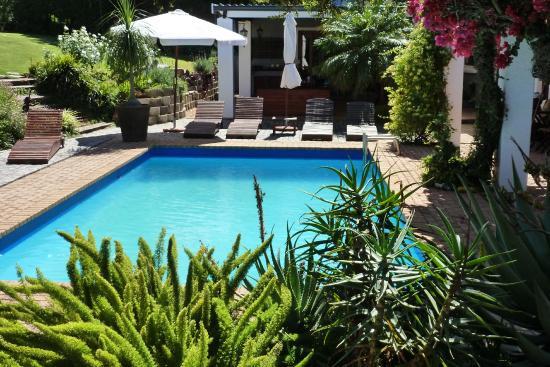 Marula Lodge: Pool/Garten