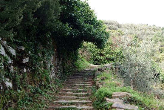 Santuario di Nostra Signora della Salute: Sentiero che porta alla chiesa