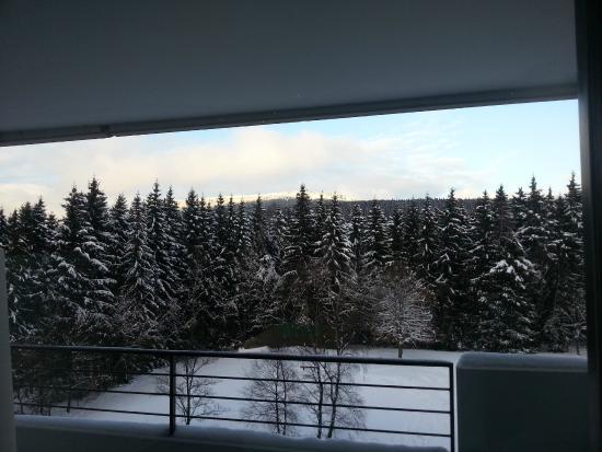 Maritim Berghotel Braunlage: Udsigt fra værelset