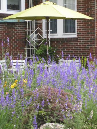 Pinckneyville, إلينوي: Outdoor Patio
