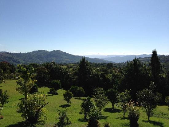 Finca El Cielo : Vista desde el balcón de habitaciones