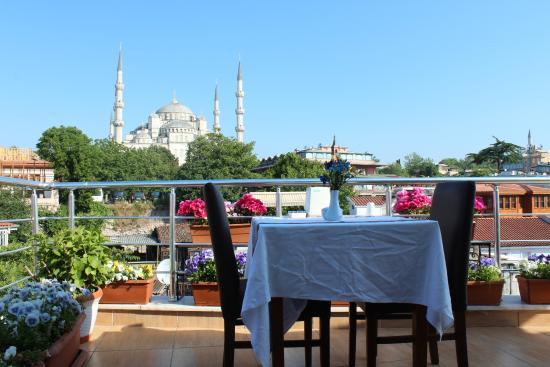 Hotels Pour Une Escapade A Istanbul : Blue tuana hotel istanbul turquie voir les tarifs avis et