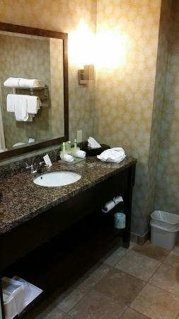 Holiday Inn Express Hotel & Suites Knoxville-Farragut: Nice size bathroom