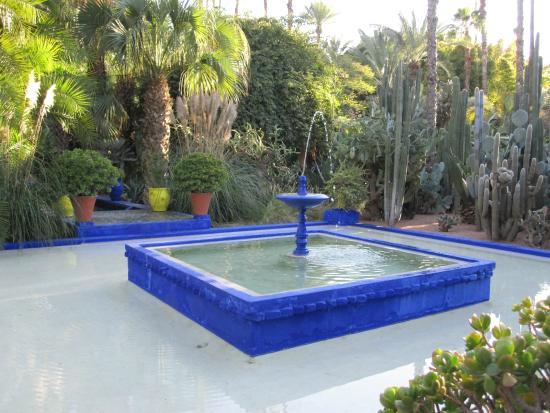 Picture of jardin majorelle marrakech tripadvisor for Jardin majorelle