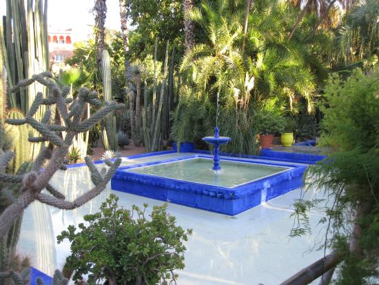 Picture of jardin majorelle marrakech tripadvisor for Jardin majorelle