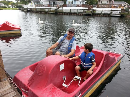 Lakewood Camping Resort Paddle Boats