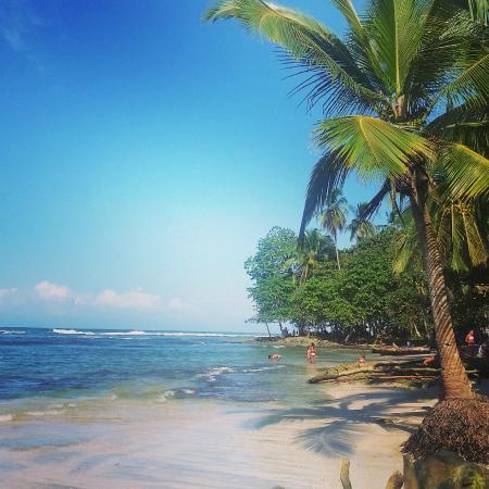 Tierra de Suenos Lodge: playa puerto viejo