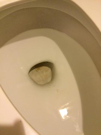 Americas Best Value Inn-Independence-Kansas City: The toilet had obviously not been cleaned.