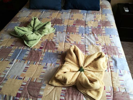 ApartHotel Tierra del Fuego: Towel Day 1