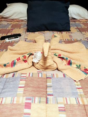 ApartHotel Tierra del Fuego: Towels Day 2