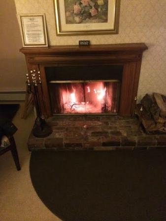 Snow Goose Inn : rm 11 fire place