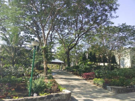 Dr Modi's Resort: Green and clean
