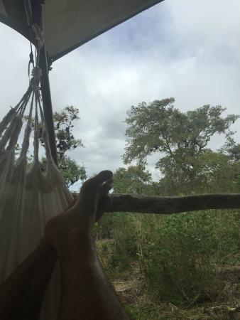 Galapagos Safari Camp: The view from the room's balcony