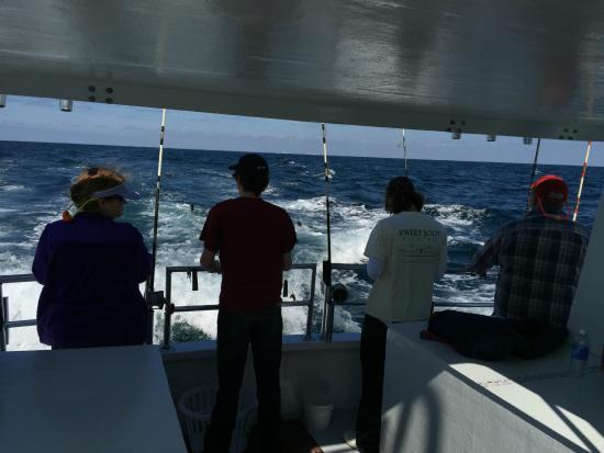 Our catch foto di sweet jody fishing destin tripadvisor for Sweet jody fishing