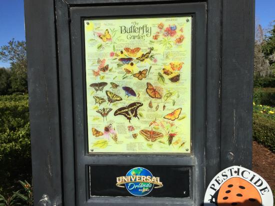 Superbe Hard Rock Hotel At Universal Orlando: Butterfly Garden On The Way To/from  Hotel