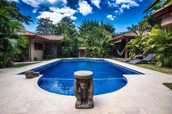 Villas Santa Teresa: Amazing pool