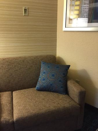 Fairfield Inn & Suites Traverse City: Love the couch