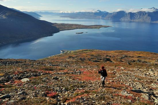 Lyngen Municipality, Noruega: View towards Spåkenes - the peninsula in the middle of the Lyngenfjord.