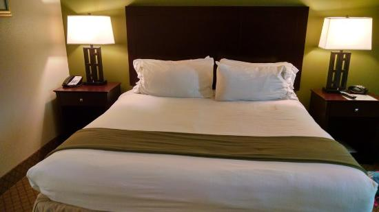 Holiday Inn Express Hotel & Suites Columbus - Fort Benning: King Bed