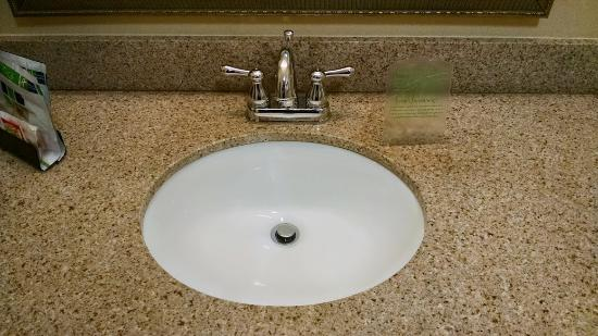 Holiday Inn Express Hotel & Suites Columbus - Fort Benning: Sink