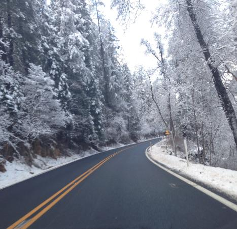 Coconino National Forest: The road from Flagstaff to Sedona in January