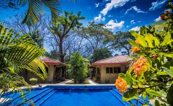 Villas Santa Teresa: Pool