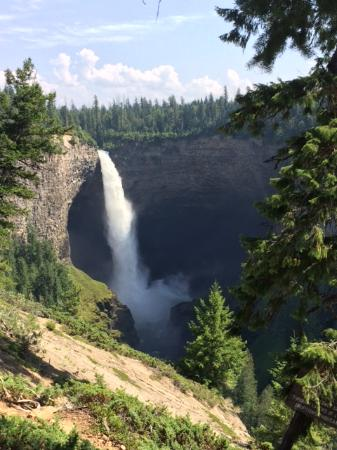 Canadian Bear Guesthouse: Wells Gray Park