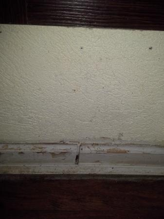 Hotel Morgantown and Conference Center: baseboards