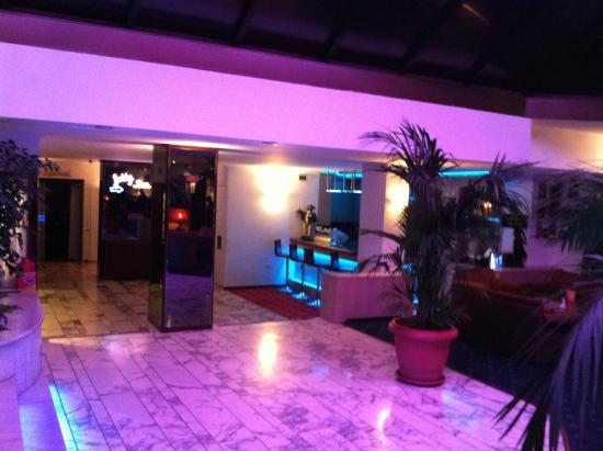 Gunes Hotel Merter: Bar